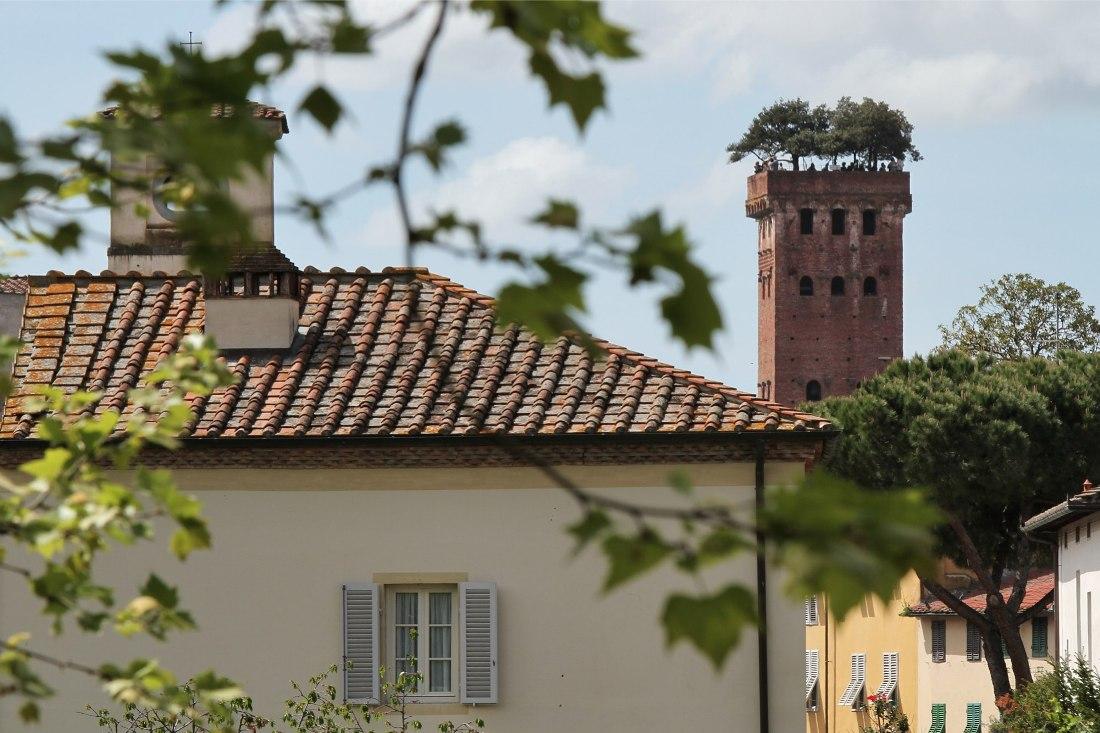 Torre Guinigi 3 rid